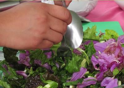 Ensalada de dalia y hortalizas con vinagreta de chile de árbol