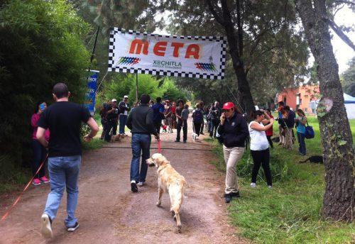 Día Canino 2019