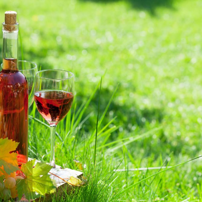 6 cosas que no sabías sobre el vino