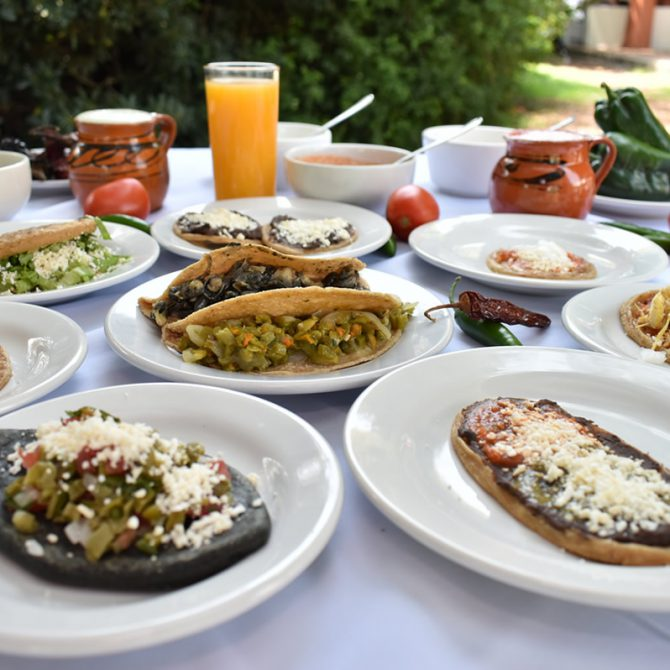 Todo lo que debes saber sobre el Festival Regional de la Garnacha y el Pulque