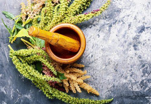 5 razones por las cuales es muy bueno consumir amaranto