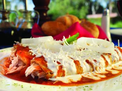 Todo lo que debes saber sobre las enchiladas